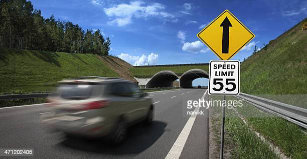 car going fast with speed limit road sign - speed limit sign stock photos and pictures