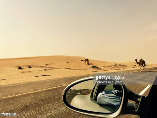 car in desert against clear sky - gulf countries stock pictures, royalty-free photos & images