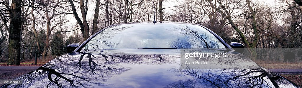 Car in Forest : Stock Photo
