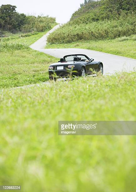 A car in the grassland