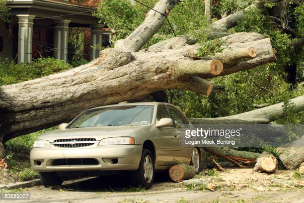A car lies crushed by a tree downed by Tropical Storm Hanna September 6 2008 in Wilmington North Carolina The storm made landfall early this morning...