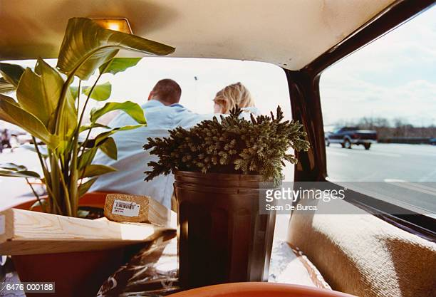 Car Loaded with Houseplants