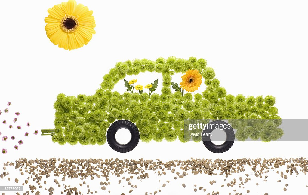 A car made of flowers : Stock Photo