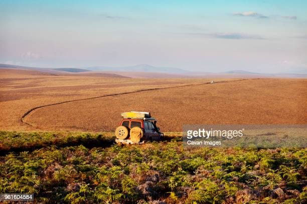 car on field against sky - tarangire national park stock pictures, royalty-free photos & images