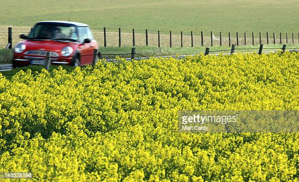 A car passes along the A303 as rapeseed blooms in a field close to the ancient monument of Stonehenge on April 24 2012 near Amesbury England The...