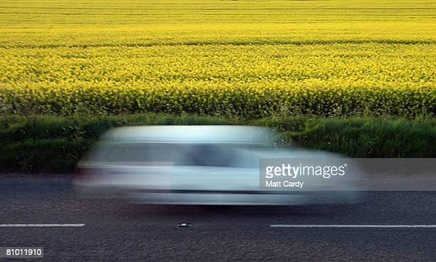 A car passes by a field of Oilseed Rape plants in bloom in the Cotswolds village of Tormarton on May 6 2008 near Tetbury in Gloucestershire England...
