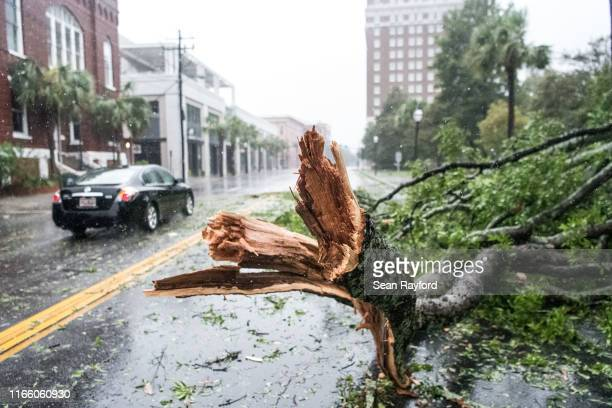 Car rives around a fallen tree branch on Calhoun St on September 4, 2019 in Charleston, South Carolina. Hurricane Dorian is just off coast of South...