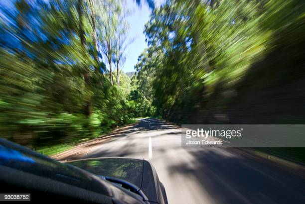 A car speeds along a tight, winding forested road on a summer day.