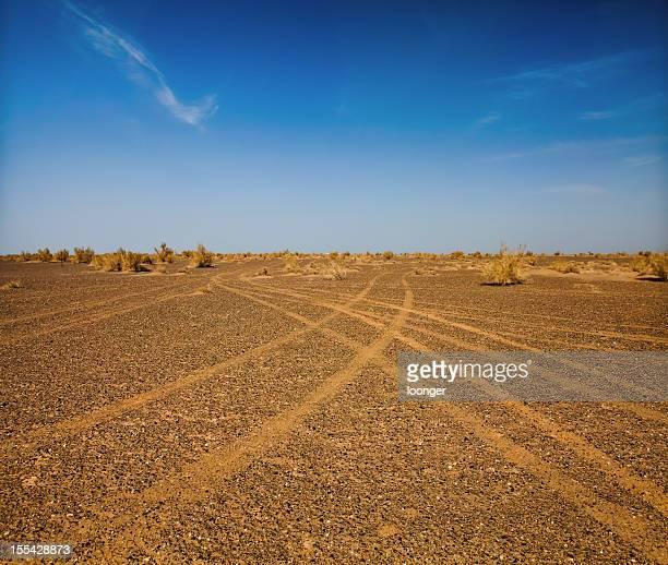 Car tire tracks in the gobi desert