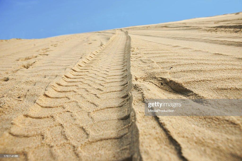 Car tracks on sand : Stock Photo