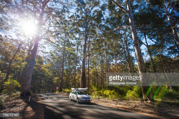 A Car With Kayak Driving On Caves Road Through The Boranup Forest, Western Australia