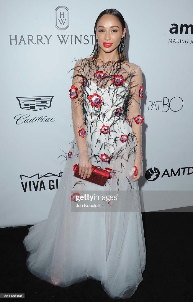 Cara Santana arrives at amfAR Los Angeles 2017 at Ron Burkleâs Green Acres Estate on October 13, 2017 in Beverly Hills, Californi