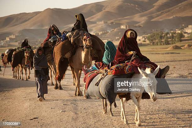 Caravan of Kuchi nomads on the move in Ghor province, in central Afghanistan, August 11, 2011. The mountainous central province, which borderers...
