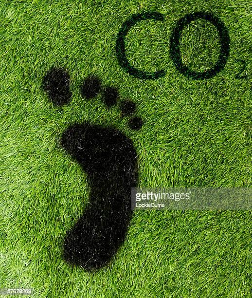 carbon dioxide - carbon dioxide bildbanksfoton och bilder