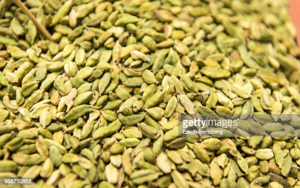 cardamom - cardamom stock photos and pictures