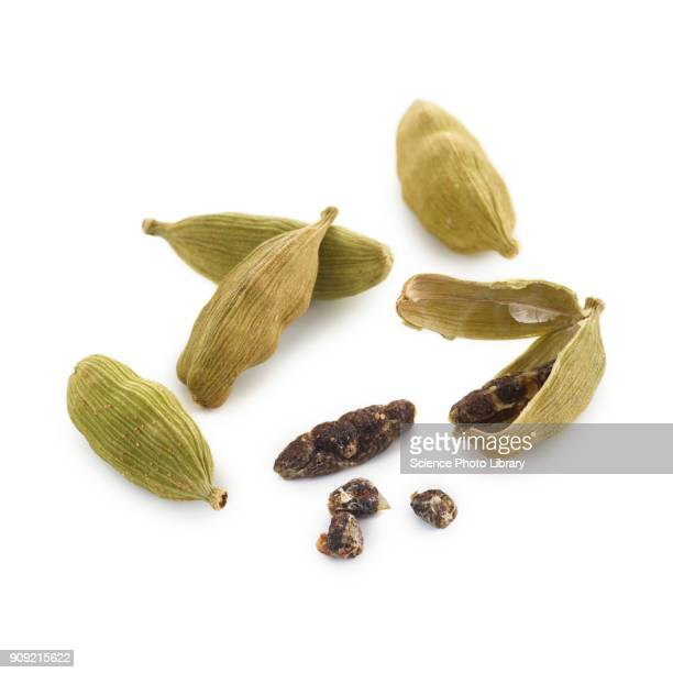 cardamom seeds - cardamom stock photos and pictures