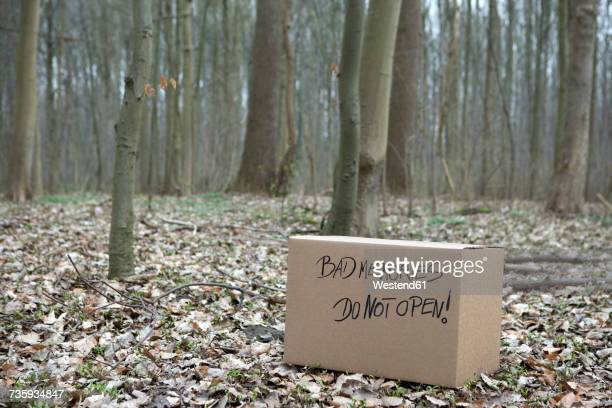 Cardboard box with Bad memories in the woods