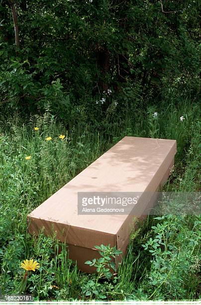 Cardboard coffin in woodland setting Eillen was very cautious abot the subject she didn't wish to be photographed with the coffin Also SHE DOESN'T...
