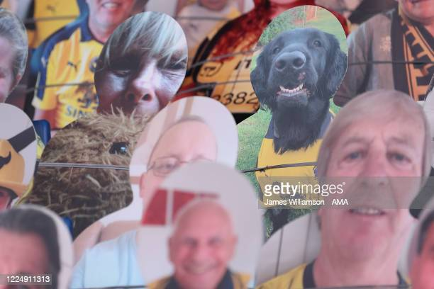 Cardboard cutout of a dog in the stand during the Sky Bet League One Play Off Semi-final 2nd Leg match between Oxford United and Portsmouth FC at...
