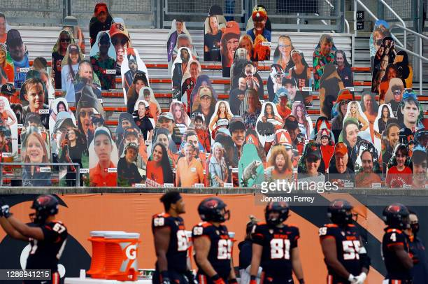 Cardboard fans sit in the grandstnds during the game between the California Golden Bears and the Oregon State Beavers at Reser Stadium on November...