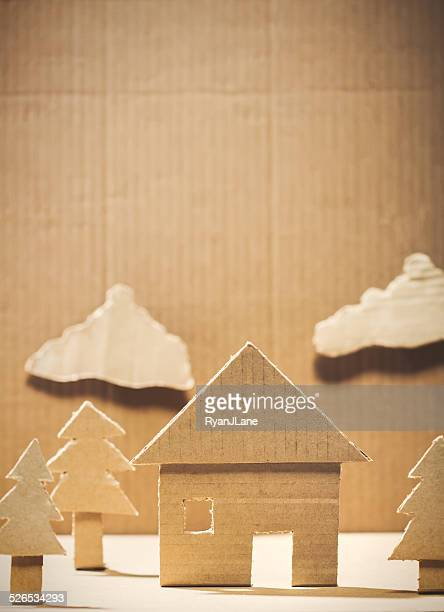 Cardboard Recycled Home