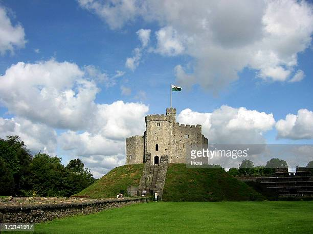 cardiff castle - cardiff wales stock pictures, royalty-free photos & images