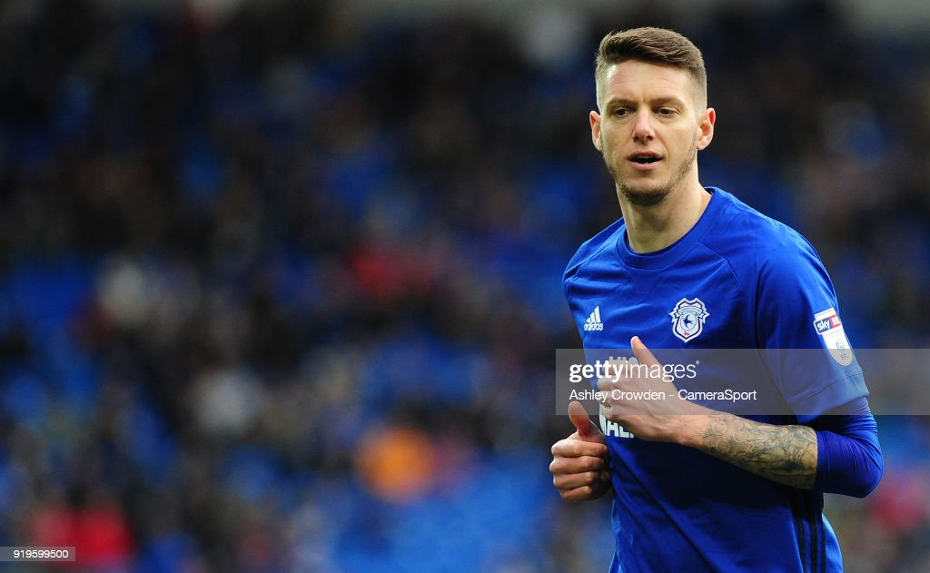 Cardiff City's Greg Halford during the Sky Bet Championship match between Cardiff City and Middlesbrough at Cardiff City Stadium on February 17, 2018 in Cardiff, Wales.