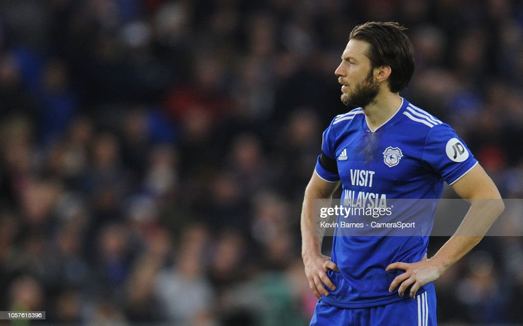 Cardiff City v Leicester City - Premier League : News Photo