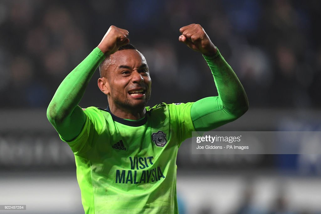 Cardiff City's Loic Damour celebrates victory after the Sky Bet Championship match at Portman Road, Ipswich.