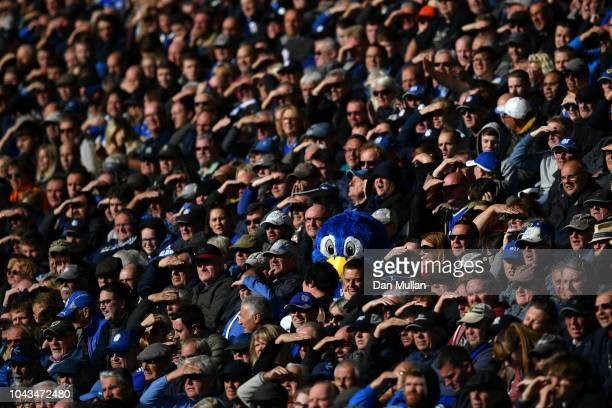 Cardiff City's mascot Bartley Bluebird watches the match from the stands during the Premier League match between Cardiff City and Burnley FC at...
