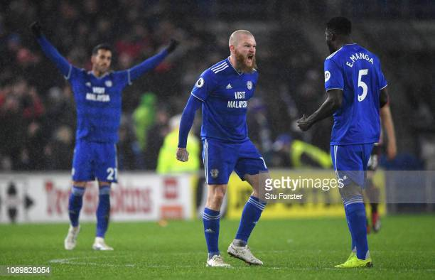Cardiff player Aron Gunnarsson celebrates on the final whistle during the Premier League match between Cardiff City and Southampton FC at Cardiff...