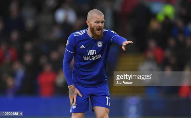 Cardiff player Aron Gunnarsson reacts during the Premier League match between Cardiff City and Southampton FC at Cardiff City Stadium on December 8...