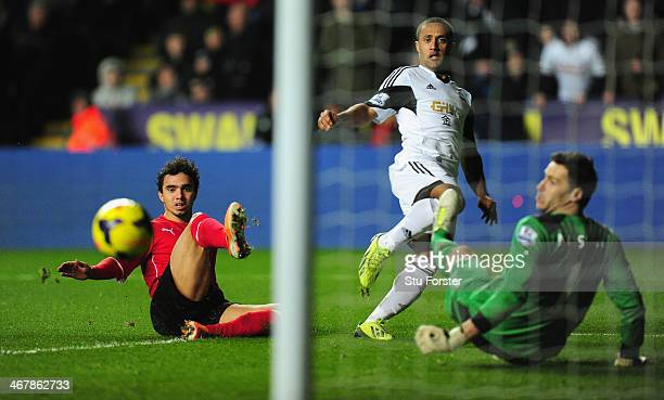 Cardiff player Fabio and keeper David Marshall look on as Wayne Routledge scores the opening goal during the Barclays Premier League match between...