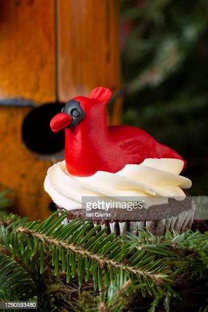 cardinal cupcake - ian gwinn stock pictures, royalty-free photos & images