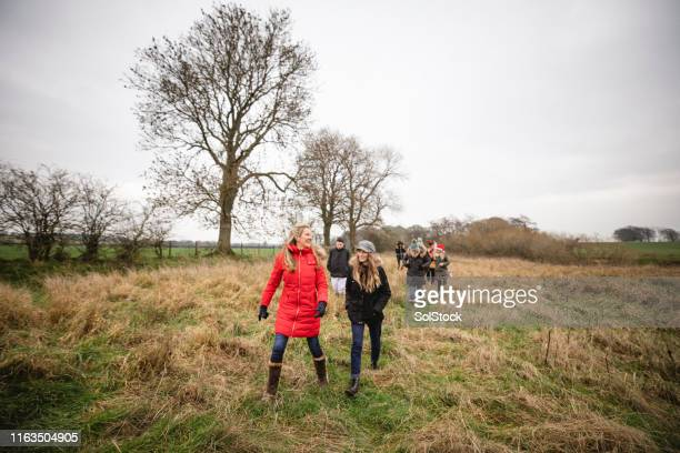 carefree christmas walks - group of people stock pictures, royalty-free photos & images