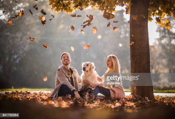 carefree couple and their dog among autumn leaves in the park. - autumn dog stock pictures, royalty-free photos & images
