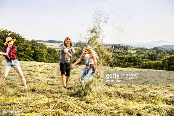 carefree friends playing with hay in a field - stroh stock-fotos und bilder