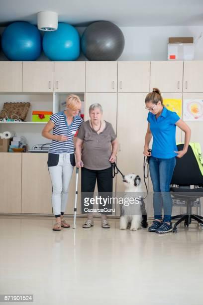 Soignants à femme Senior à marcher avec un chien