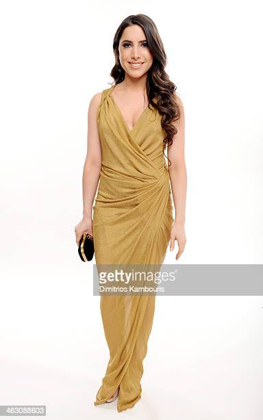 Caren Brooks of the Brooks Family Foundation poses for a portrait during the 19th Annual Critics' Choice Movie Awards at Barker Hangar on January 16,...