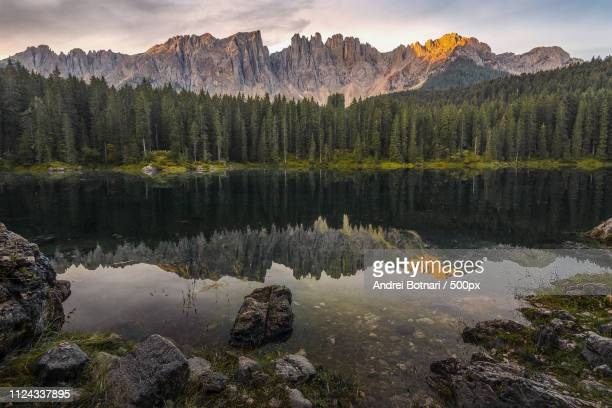 carezza lake - mirror lake stock pictures, royalty-free photos & images