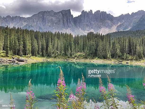 Carezza Lake  - Trentino Alto Adige - Italy