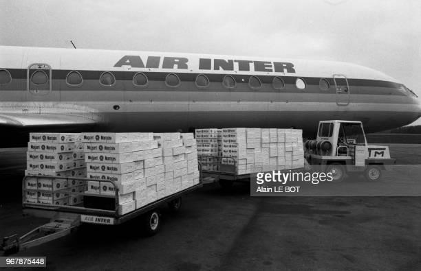 Cargaison de muguet prêt d'un avion à l'aéroport de Nantes le 29 avril 1987, France.