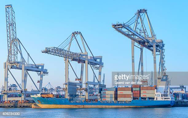 """cargo container ship at a container terminal in rotterdam port - """"sjoerd van der wal"""" stock pictures, royalty-free photos & images"""