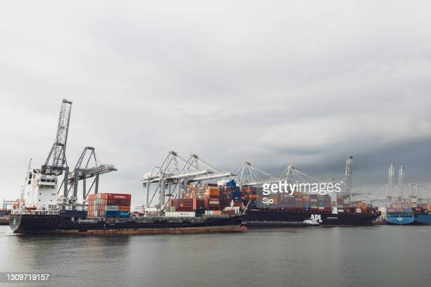 """cargo container ships in the port of rotterdam at the ect container terminal - """"sjoerd van der wal"""" or """"sjo"""" stock pictures, royalty-free photos & images"""