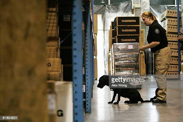 Cargo Inspector Elizabeth Koslow of the newly established Transportation Security Administration canine teams guides her dog Susie to inspect cargo...