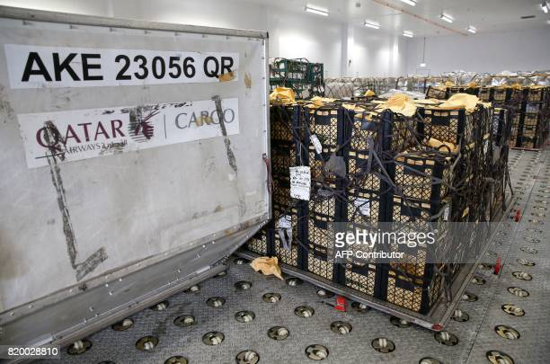 Cargo offloaded from a Qatar Airways plane is checked at a climate control centre at the Hamad International Airport in Doha on July 20 2017 / AFP...
