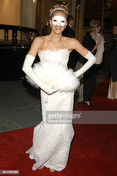 Cari Modine attends CHRISTIE'S BLACK and WHITE BALL To Celebrate The Plaza Hotel Auction at Christie's on March 14 2006 in New York City