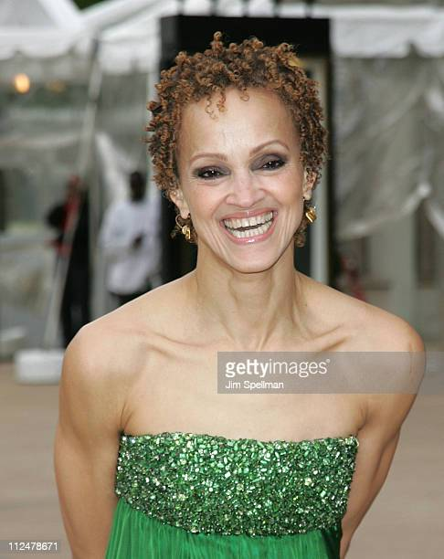 Cari Modine attends the 69th Annual American Ballet Theatre Spring Gala at The Metropolitan Opera House on May 18 2009 in New York City