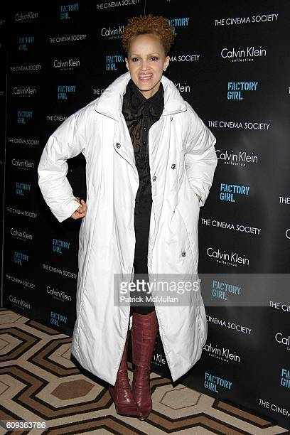 Cari Modine attends THE CINEMA SOCIETY CALVIN KLEIN present a screening of FACTORY GIRL at Tribeca Grand Hotel on January 30 2007 in New York City