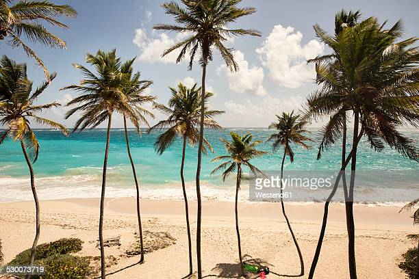 caribbean, barbados, bottom bay beach - barbados stock pictures, royalty-free photos & images